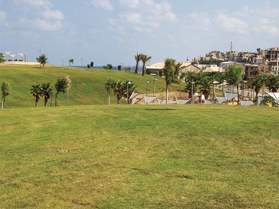 פארק המדרון / צלם: עיריית תל אביב